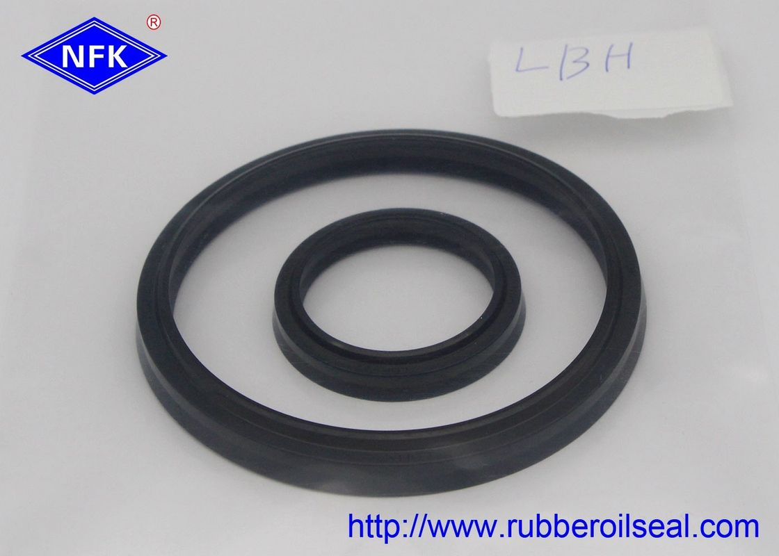 Cylinder Rod Rubber Dust Seal DSI LBI LBH VAY DH Different Type High Temp Resistant